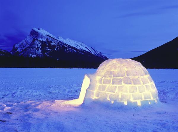Glaciar Seal Heidi Klum