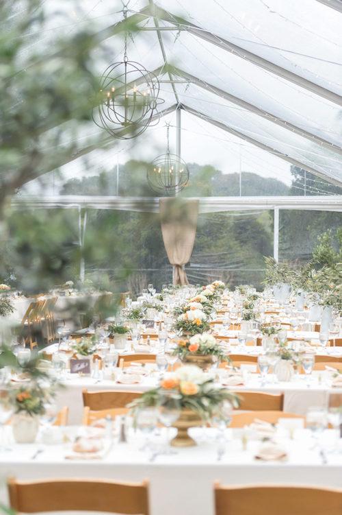 bodas bajo la lluvia carpas